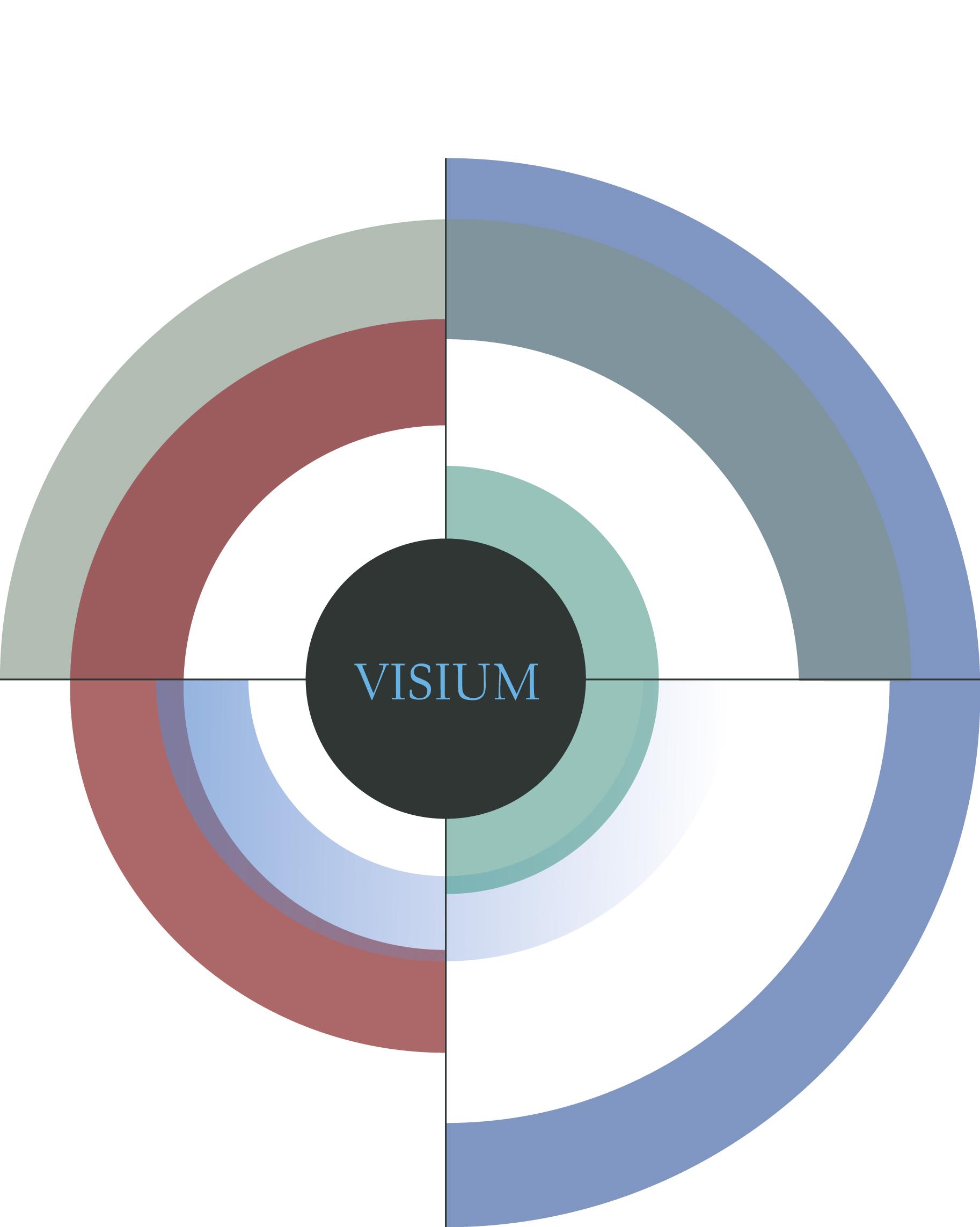 Logo visium